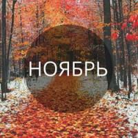 vi-Новинка ноября